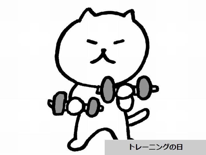 トレーニングの日